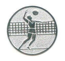 Вкладыш D1 A6/S (волейбол)
