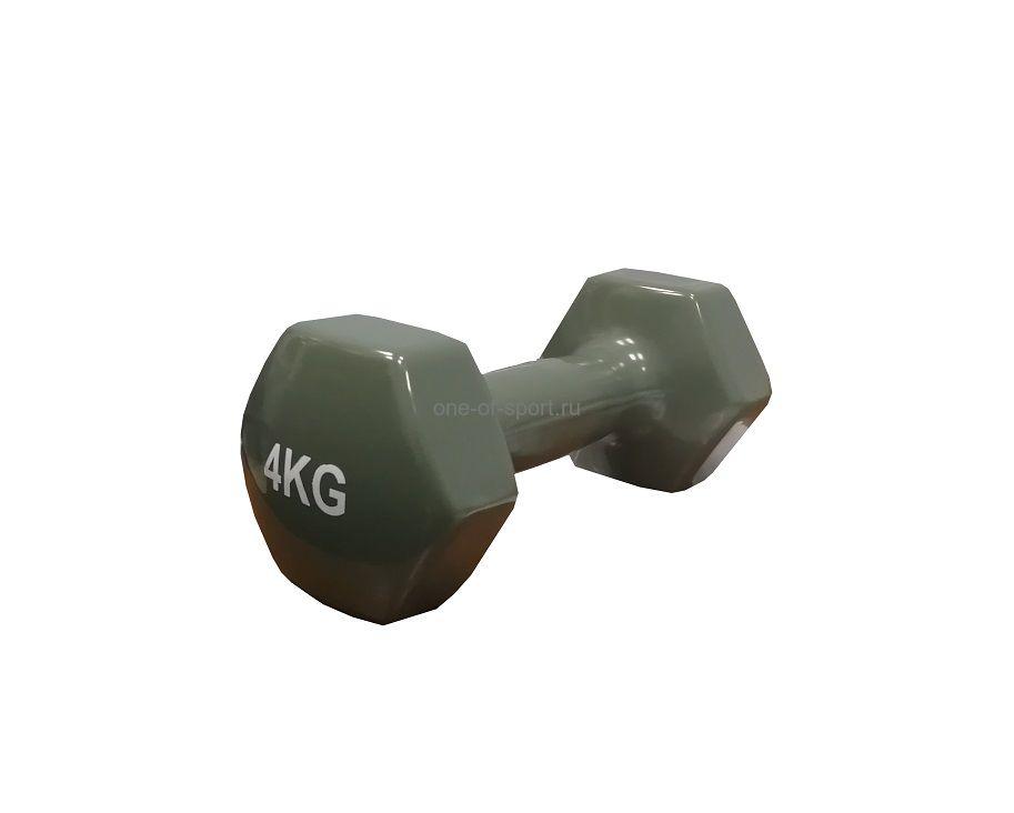 Гантель Tempus (винил) 4 кг арт.LKDB-503