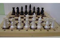 Шахматы гроссмейстерские с доской, фигуры пластик р.410*210 арт.02-116